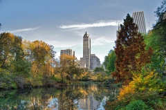 800px-Southwest_corner_of_Central_Park,_looking_east,_NYC.jpg